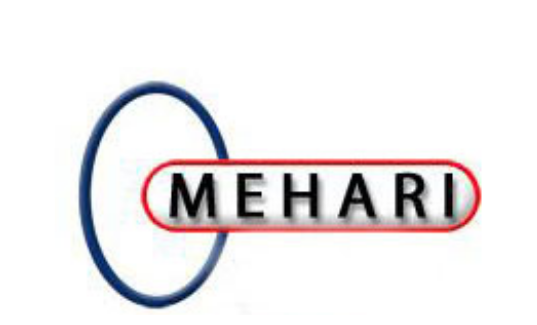 MEHARI 2010: Processing guide for risk analysis and management