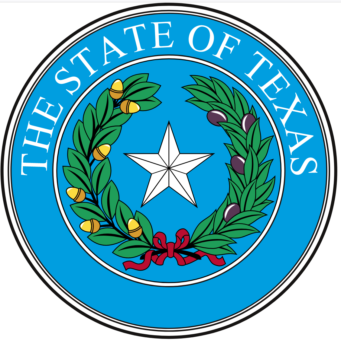 Texas - Identity Theft Enforcement and Protection Act